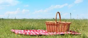 picnic-header-1024x441